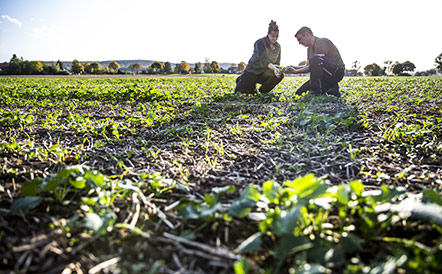 agriculture-biologique-tracabilite-leanature