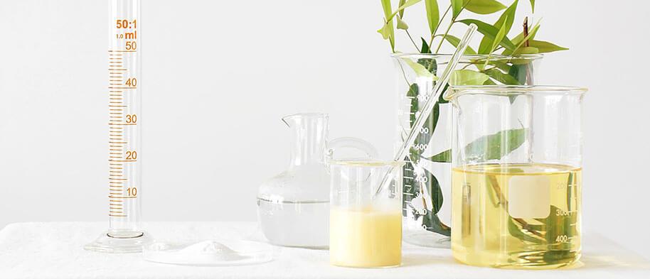 expertise-plante-detox-leanature