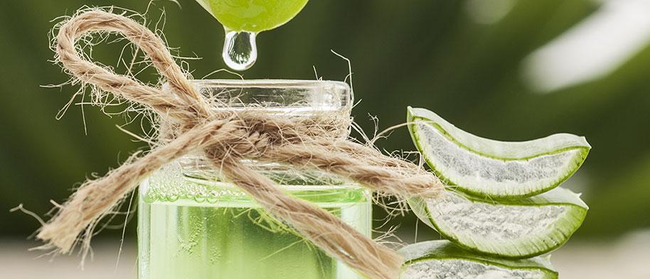 ingredient-aloevera-sobioetic-leanature